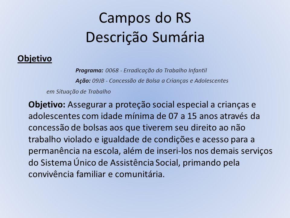 Campos do RS Descrição Sumária Objetivo Programa: 0068 - Erradicação do Trabalho Infantil Ação: 09JB - Concessão de Bolsa a Crianças e Adolescentes em