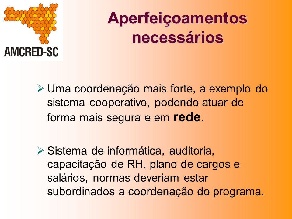 Aperfeiçoamentos necessários Uma coordenação mais forte, a exemplo do sistema cooperativo, podendo atuar de forma mais segura e em rede. Sistema de in