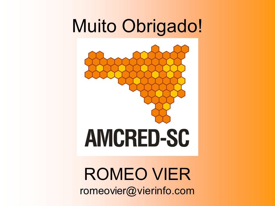 Muito Obrigado! ROMEO VIER romeovier@vierinfo.com