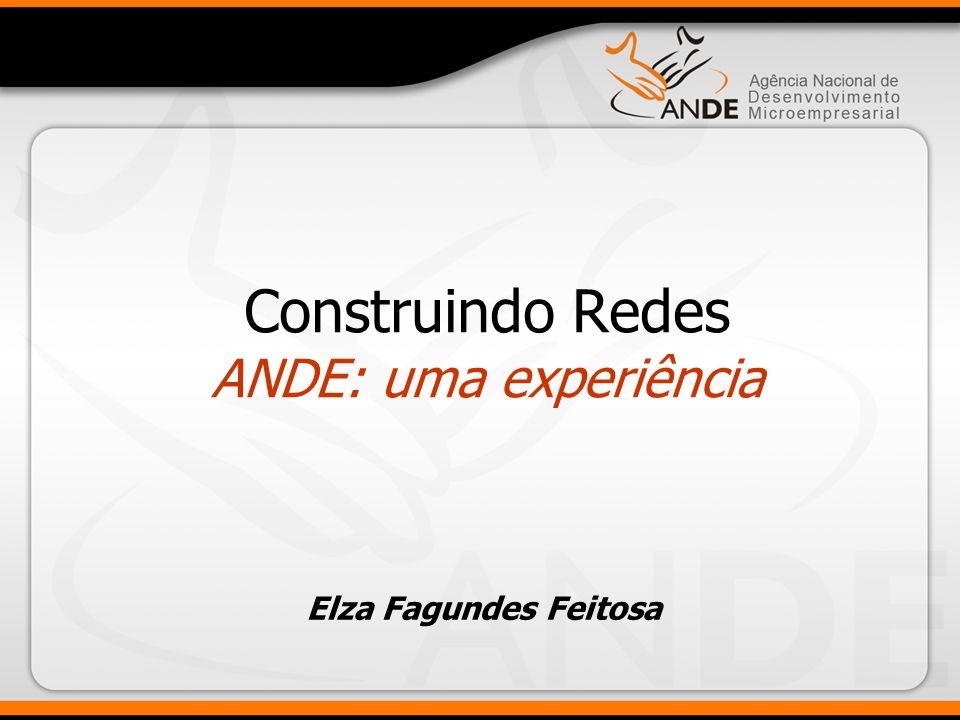 Construindo Redes ANDE: uma experiência Elza Fagundes Feitosa