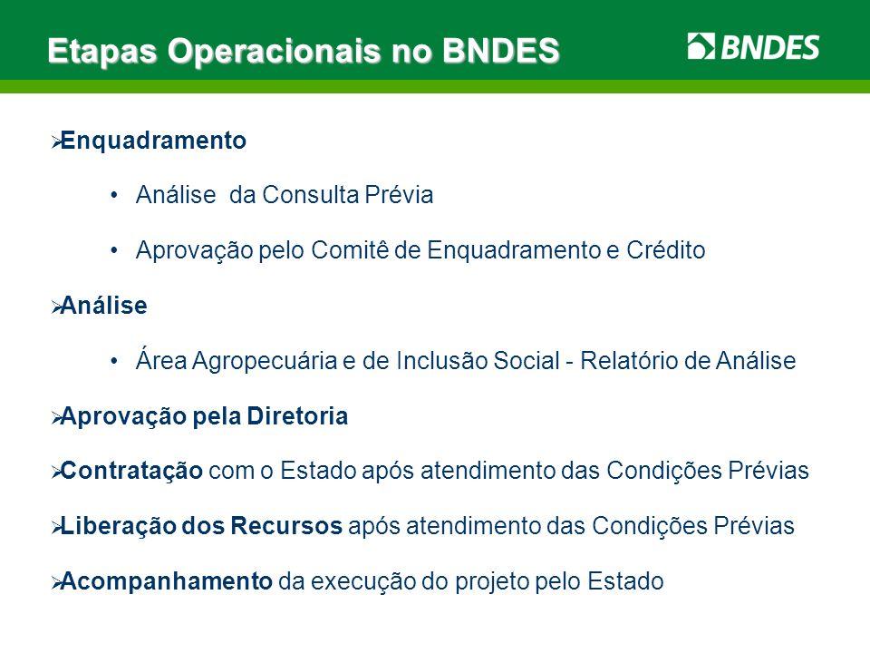 Enquadramento Análise da Consulta Prévia Aprovação pelo Comitê de Enquadramento e Crédito Análise Área Agropecuária e de Inclusão Social - Relatório d