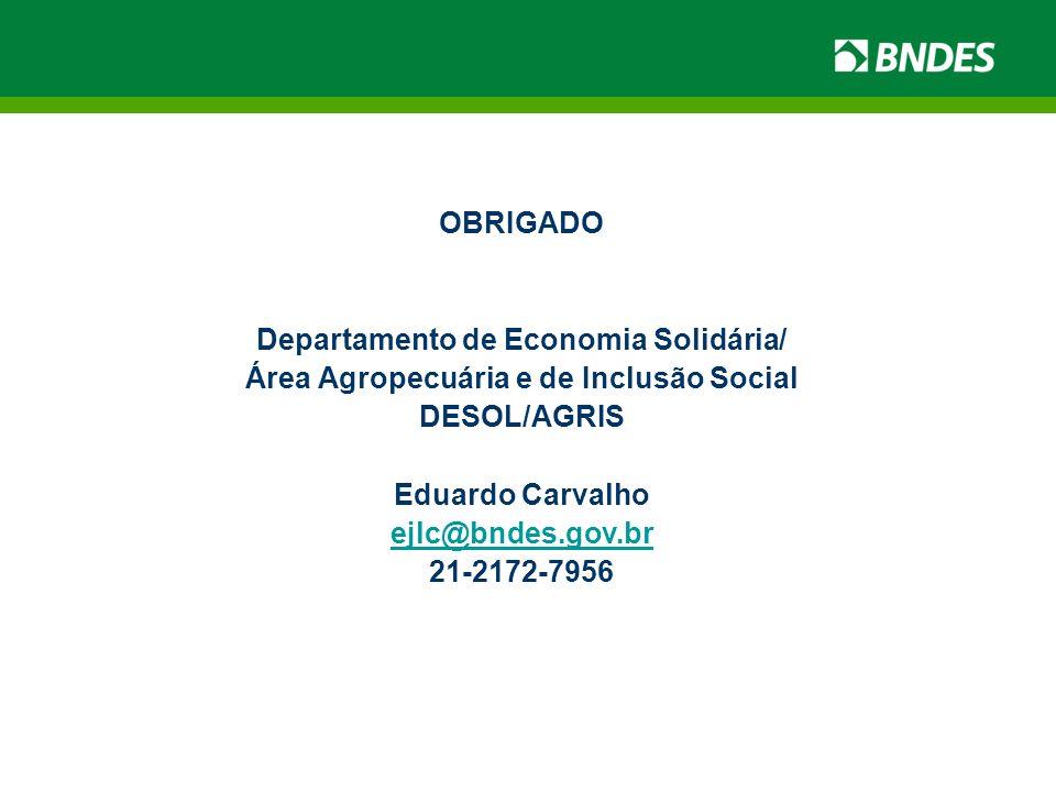 OBRIGADO Departamento de Economia Solidária/ Área Agropecuária e de Inclusão Social DESOL/AGRIS Eduardo Carvalho ejlc@bndes.gov.br 21-2172-7956