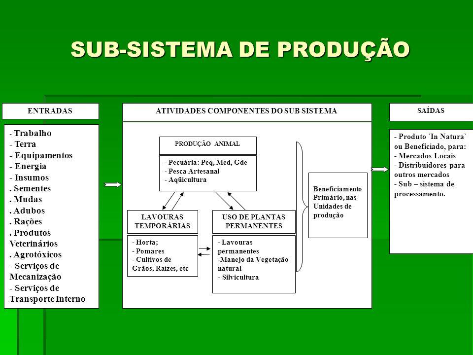 SUB-SISTEMA DE PRODUÇÃO ENTRADAS - Trabalho - Terra - Equipamentos - Energia - Insumos. Sementes. Mudas. Adubos. Rações. Produtos Veterinários. Agrotó