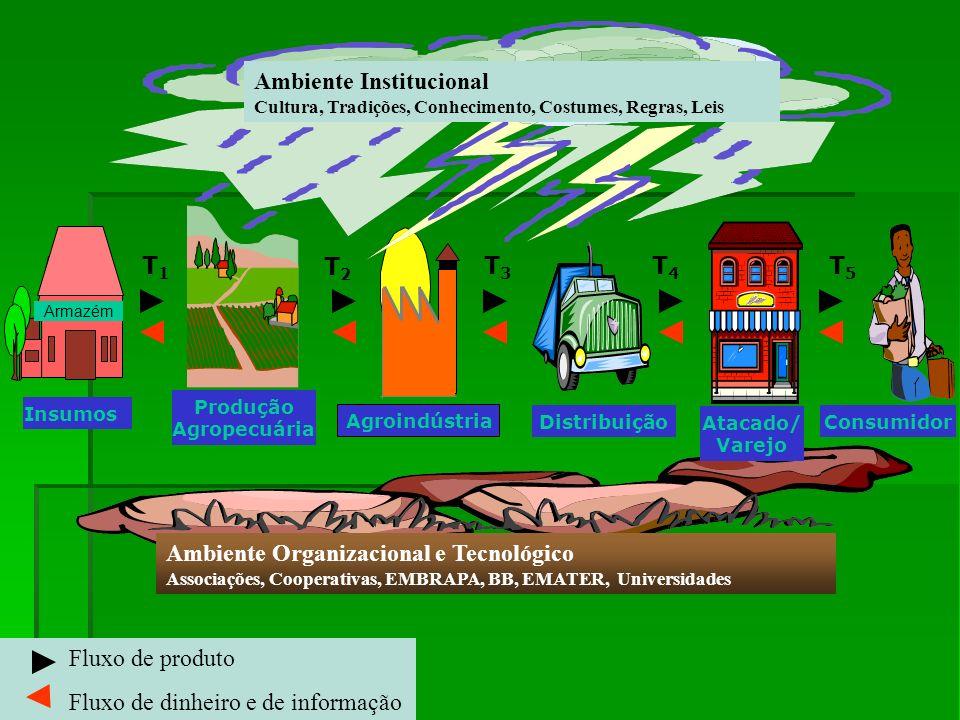 Fluxo de produto Fluxo de dinheiro e de informação T1T1 T2T2 Armazém Insumos Agroindústria Produção Agropecuária Distribuição Atacado/ Varejo Consumid