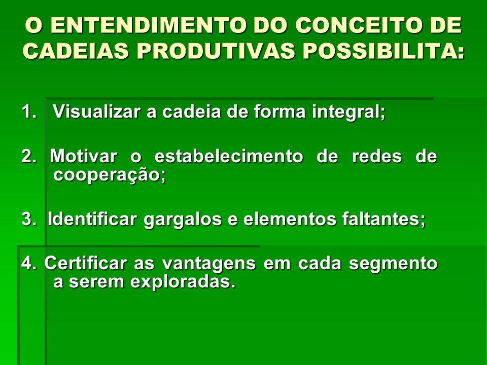 O ENTENDIMENTO DO CONCEITO DE CADEIAS PRODUTIVAS POSSIBILITA: 1. Visualizar a cadeia de forma integral; 2. Motivar o estabelecimento de redes de coope