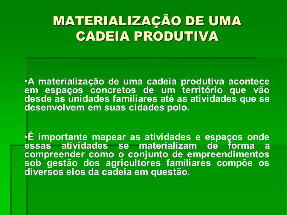 MATERIALIZAÇÃO DE UMA CADEIA PRODUTIVA A materialização de uma cadeia produtiva acontece em espaços concretos de um território que vão desde as unidad