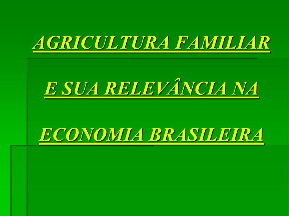 AGRICULTURA FAMILIAR E SUA RELEVÂNCIA NA ECONOMIA BRASILEIRA