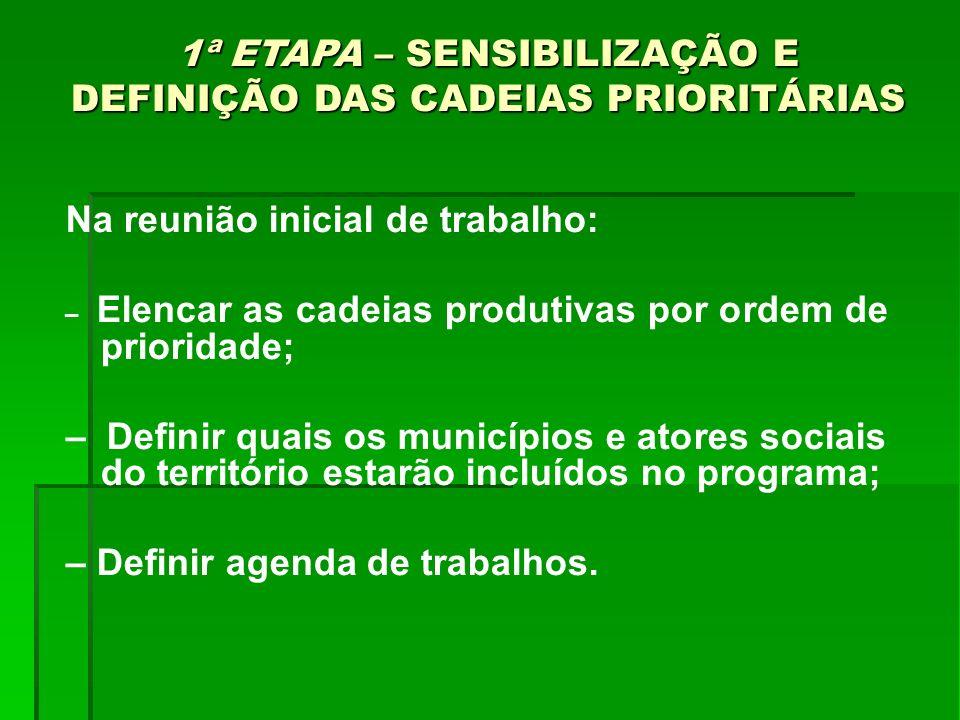 1ª ETAPA – SENSIBILIZAÇÃO E DEFINIÇÃO DAS CADEIAS PRIORITÁRIAS Na reunião inicial de trabalho: – Elencar as cadeias produtivas por ordem de prioridade