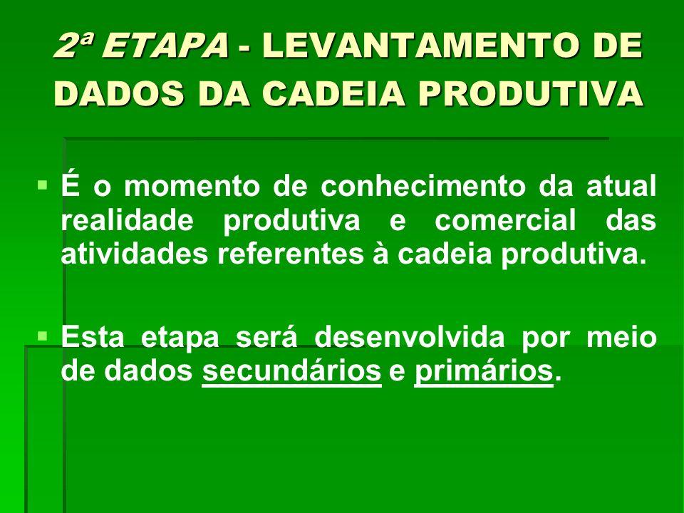 2ª ETAPA - LEVANTAMENTO DE DADOS DA CADEIA PRODUTIVA É o momento de conhecimento da atual realidade produtiva e comercial das atividades referentes à