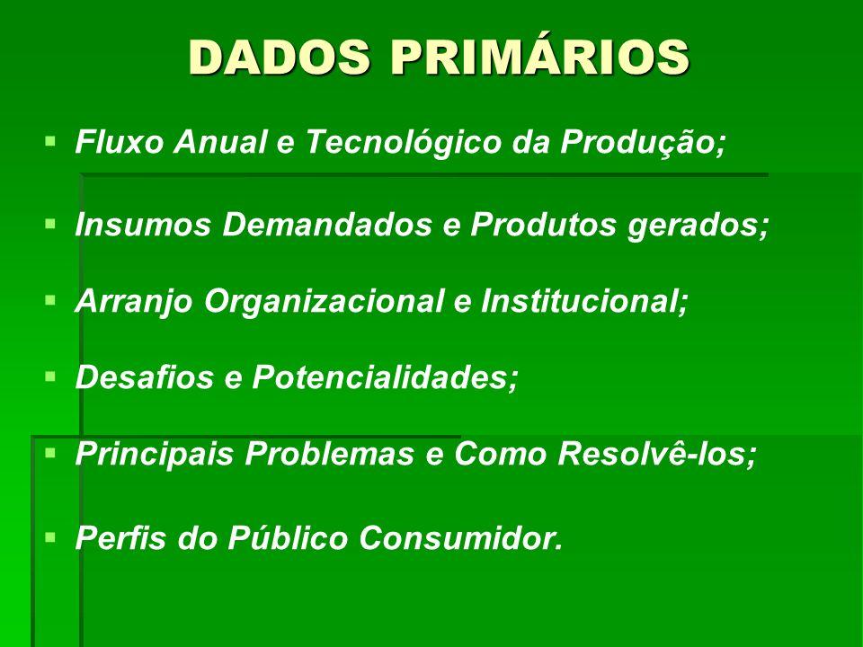 DADOS PRIMÁRIOS Fluxo Anual e Tecnológico da Produção; Insumos Demandados e Produtos gerados; Arranjo Organizacional e Institucional; Desafios e Poten