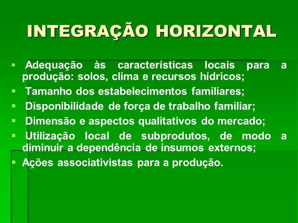 INTEGRAÇÃO HORIZONTAL Adequação às características locais para a produção: solos, clima e recursos hídricos; Tamanho dos estabelecimentos familiares;