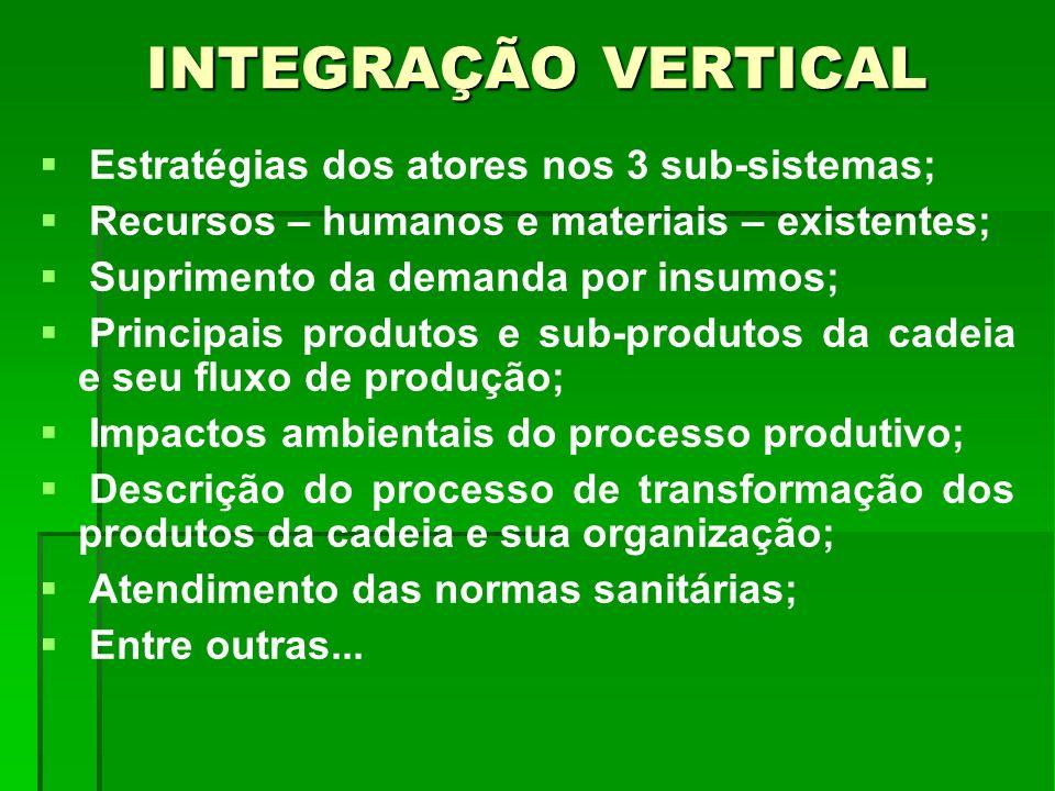 INTEGRAÇÃO VERTICAL Estratégias dos atores nos 3 sub-sistemas; Recursos – humanos e materiais – existentes; Suprimento da demanda por insumos; Princip