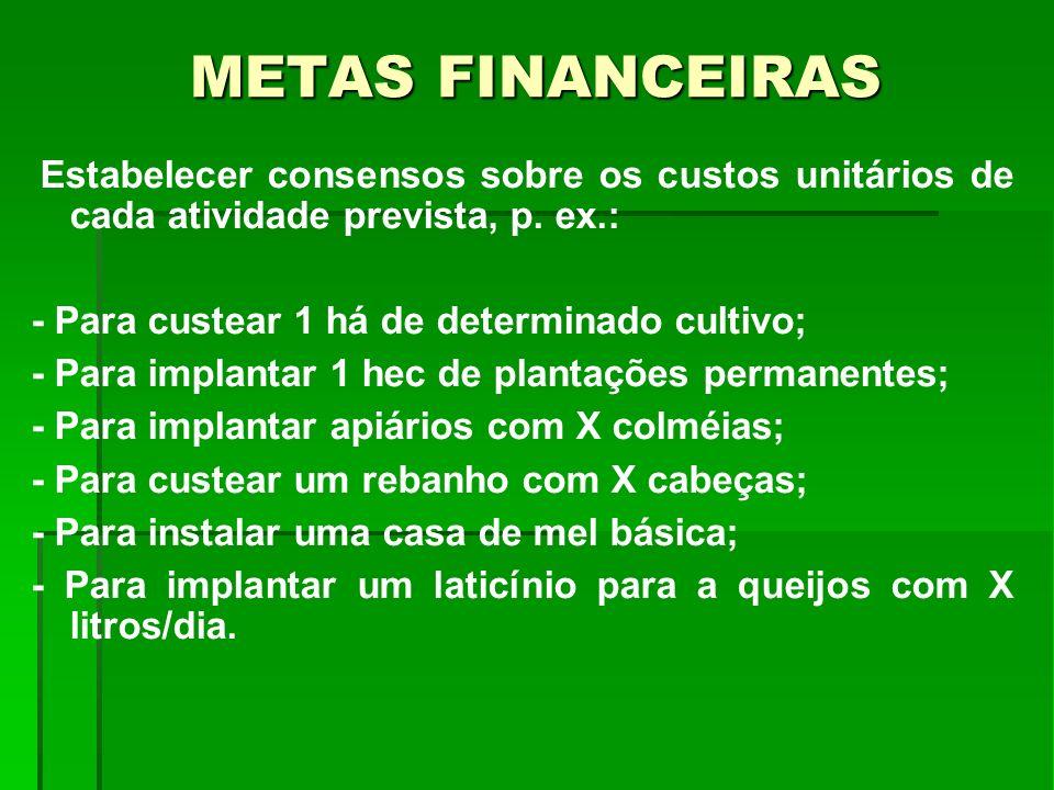 METAS FINANCEIRAS Estabelecer consensos sobre os custos unitários de cada atividade prevista, p. ex.: - Para custear 1 há de determinado cultivo; - Pa