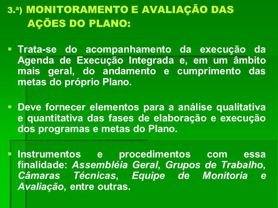 3.ª) MONITORAMENTO E AVALIAÇÃO DAS AÇÕES DO PLANO: Trata-se do acompanhamento da execução da Agenda de Execução Integrada e, em um âmbito mais geral,