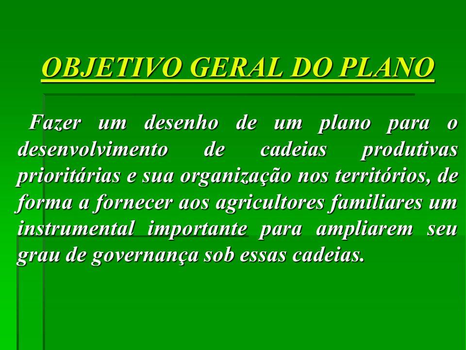 OBJETIVO GERAL DO PLANO Fazer um desenho de um plano para o desenvolvimento de cadeias produtivas prioritárias e sua organização nos territórios, de f