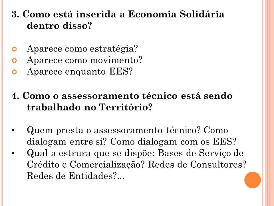 3. Como está inserida a Economia Solidária dentro disso? Aparece como estratégia? Aparece como movimento? Aparece enquanto EES? 4. Como o assessoramen