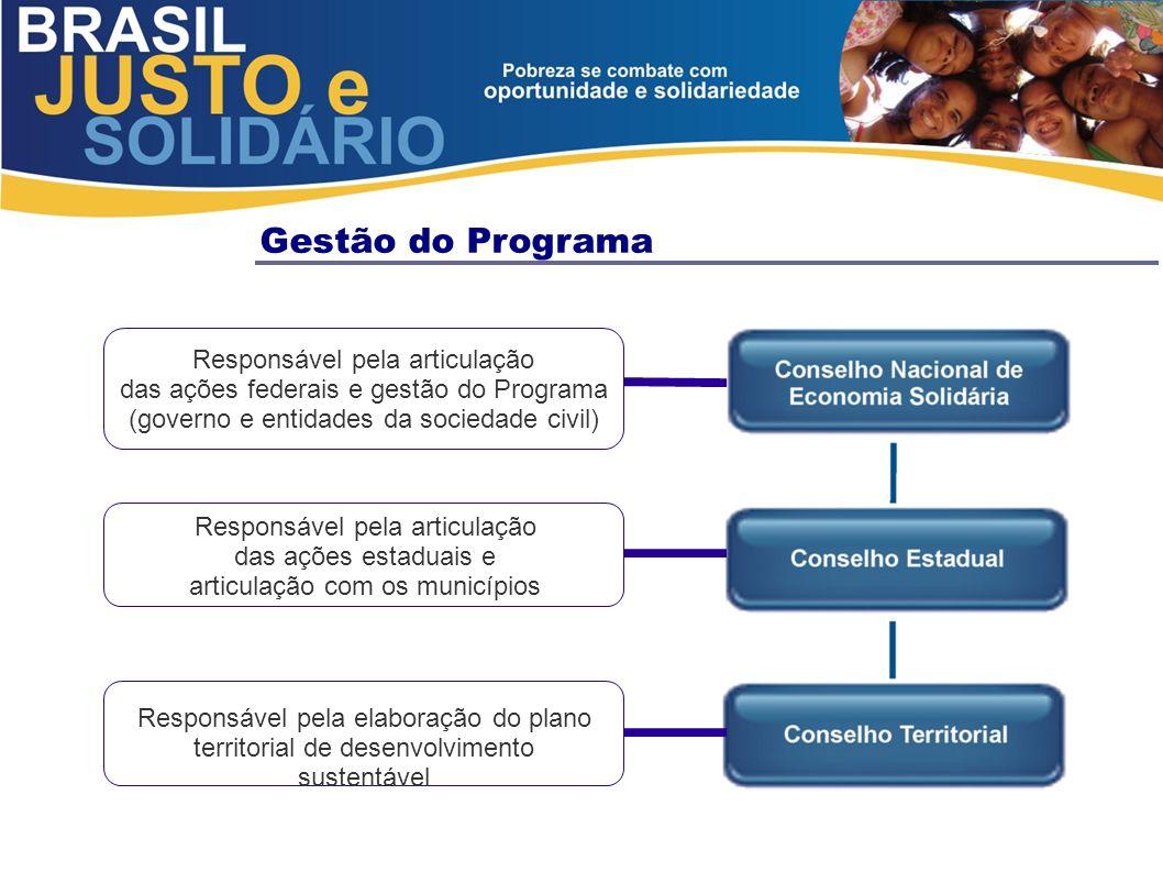 Gestão do Programa Responsável pela articulação das ações federais e gestão do Programa (governo e entidades da sociedade civil) Responsável pela arti