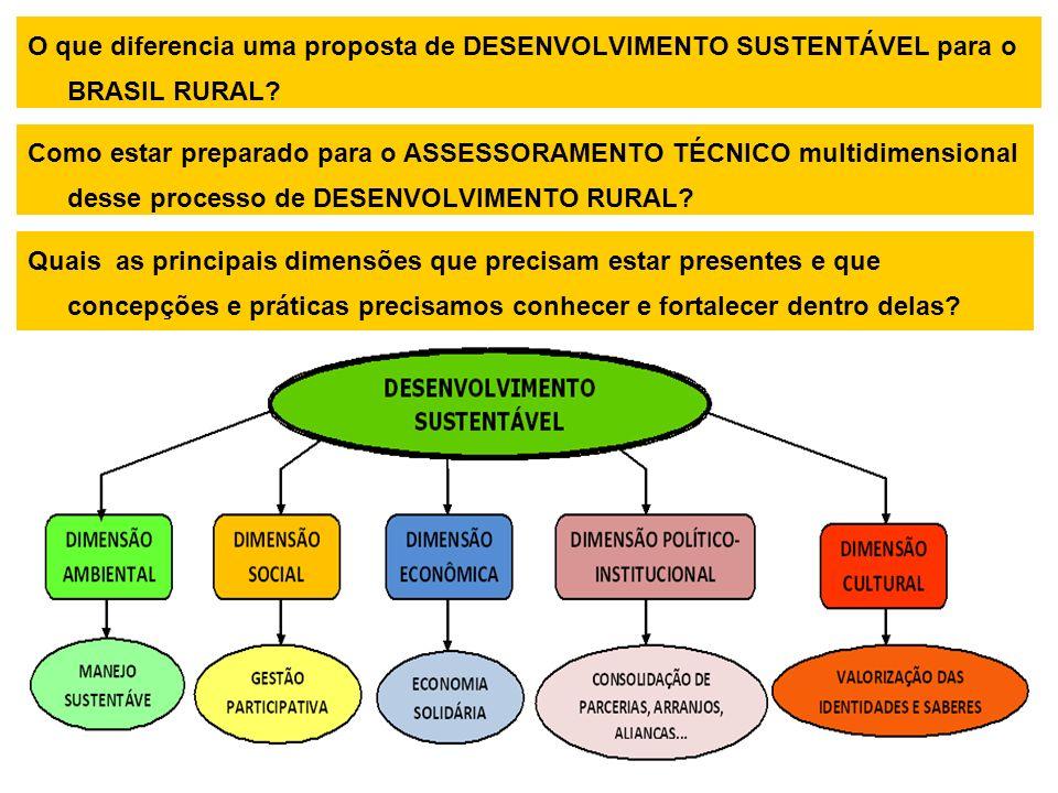 O que diferencia uma proposta de DESENVOLVIMENTO SUSTENTÁVEL para o BRASIL RURAL.