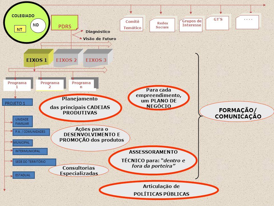 PROJETO 1 Programa 2 Programa n Programa 1 ND COLEGIADO NT PDRS Visão de Futuro Diagnóstico EIXOS 1EIXOS 2EIXOS 3 UNIDADE FAMILIAR P.A.