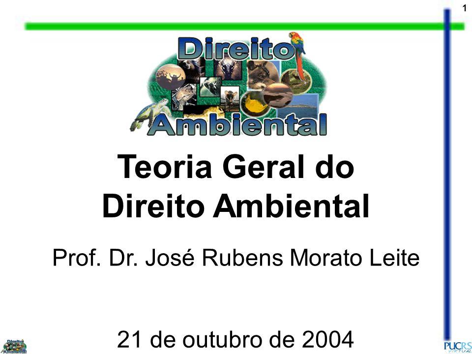 1 Teoria Geral do Direito Ambiental Prof. Dr. José Rubens Morato Leite 21 de outubro de 2004