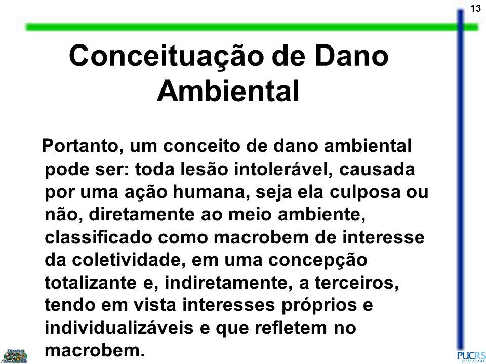 13 Conceituação de Dano Ambiental Portanto, um conceito de dano ambiental pode ser: toda lesão intolerável, causada por uma ação humana, seja ela culp
