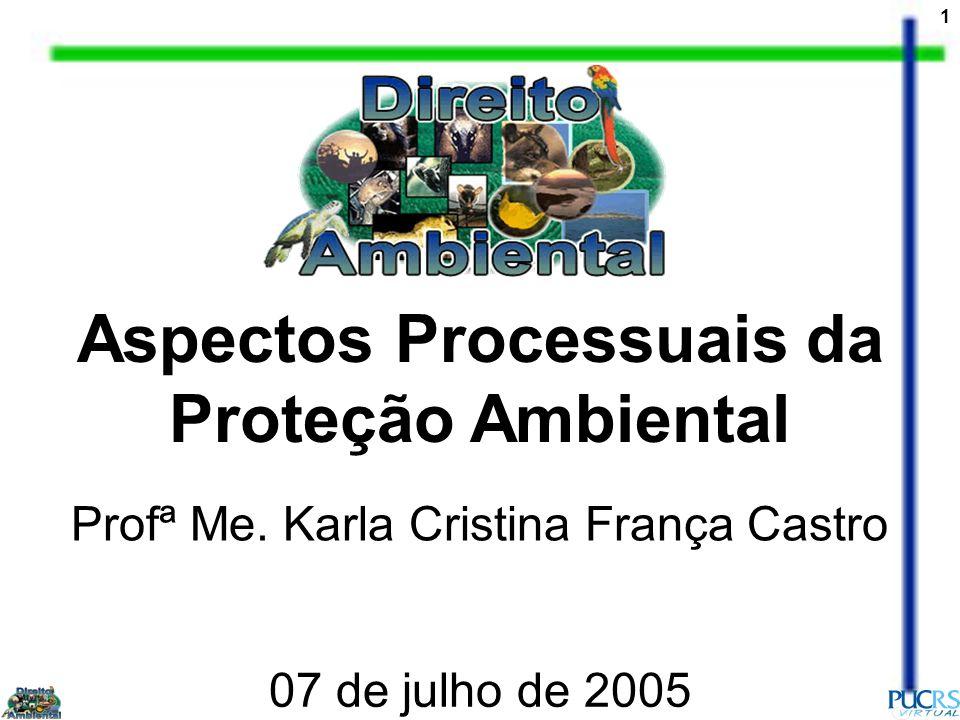 1 Aspectos Processuais da Proteção Ambiental Profª Me. Karla Cristina França Castro 07 de julho de 2005