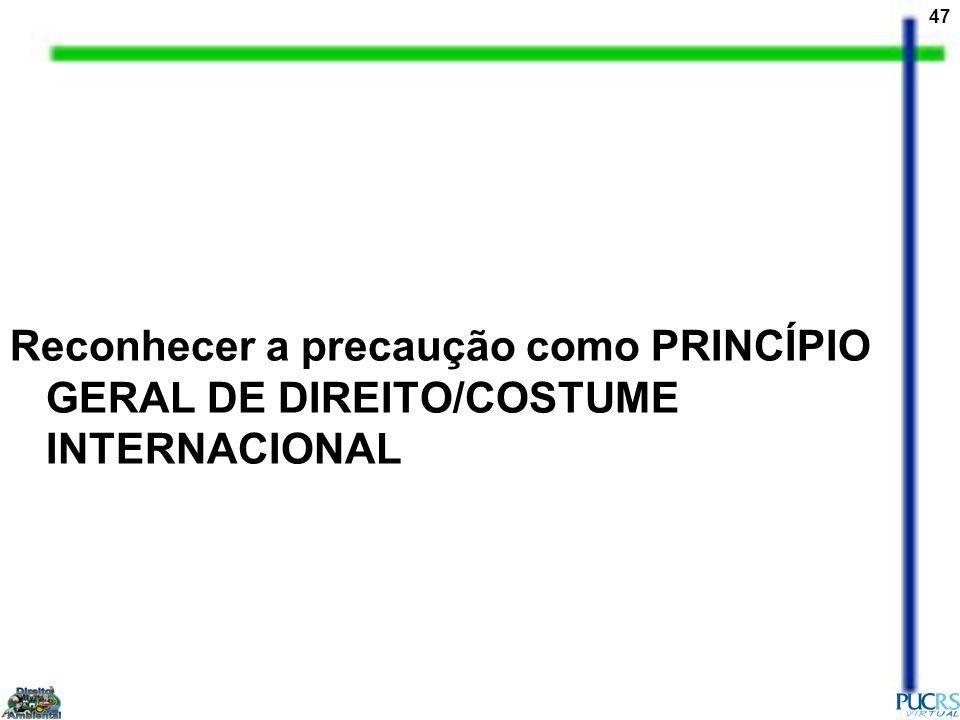 47 Reconhecer a precaução como PRINCÍPIO GERAL DE DIREITO/COSTUME INTERNACIONAL