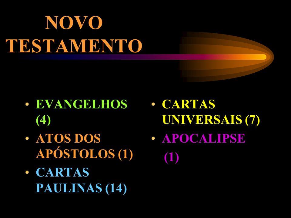 NOVO TESTAMENTO A HISTÓRIA DE JESUS (27 LIVROS)