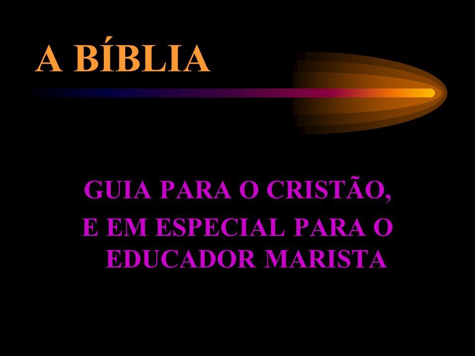 AS BÍBLIAS EXISTENTES NO MERCADO BÍBLIA OU NOVO TESTAMENTO?