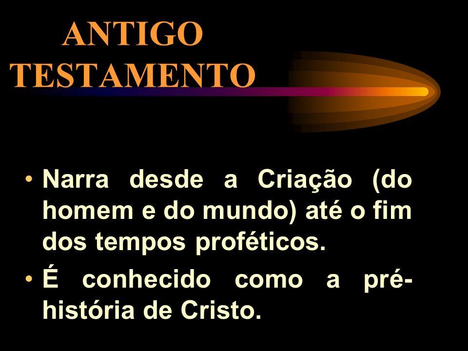 A DIVISÃO DA BÍBLIA ANTIGO TESTAMENTO 46 LIVROS NOVO TESTAMENTO 27 LIVROS