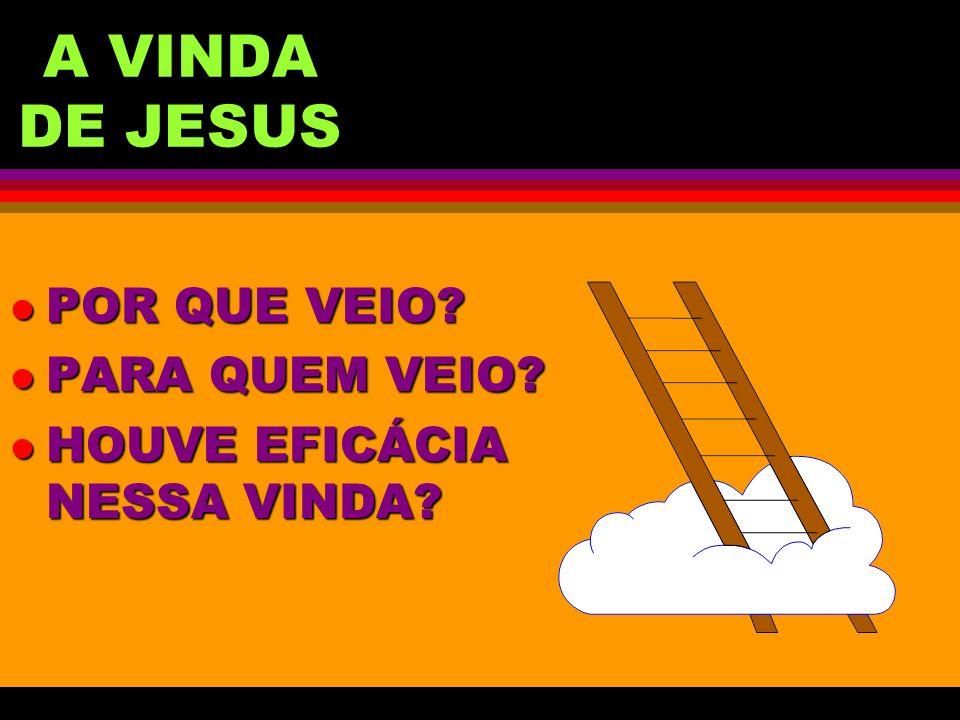 A VINDA DE JESUS l POR QUE VEIO? l PARA QUEM VEIO? l HOUVE EFICÁCIA NESSA VINDA?