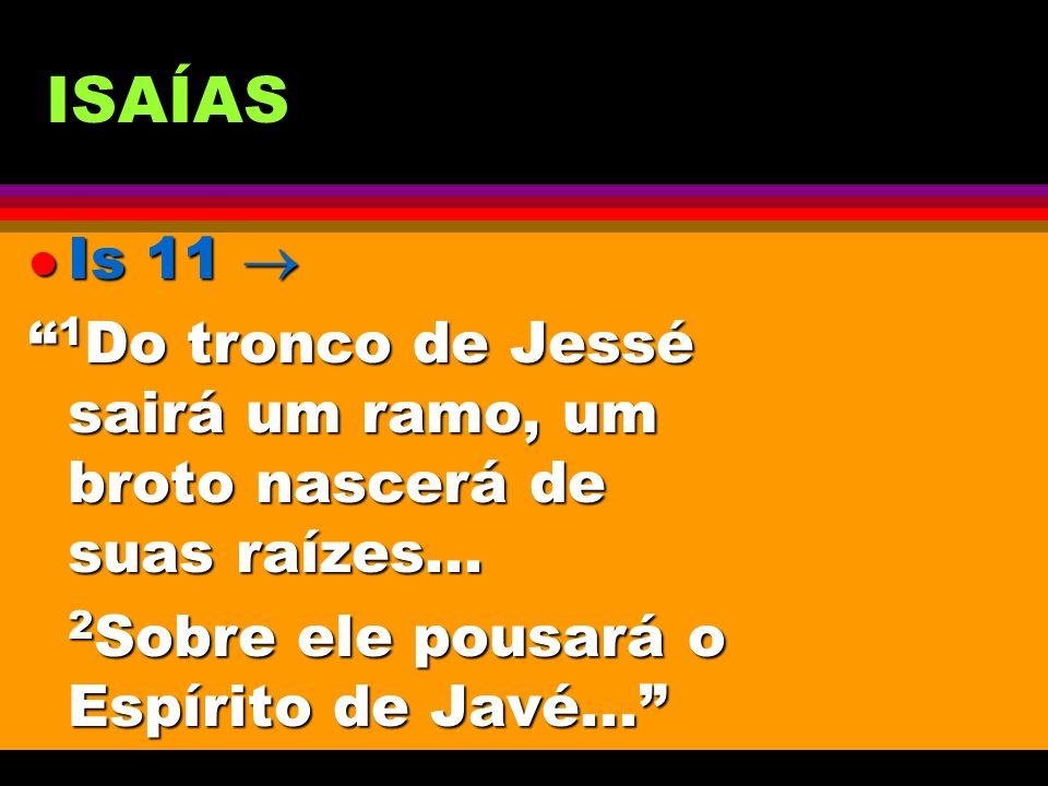 ISAÍAS l Is 11 l Is 11 1 Do tronco de Jessé sairá um ramo, um broto nascerá de suas raízes... 1 Do tronco de Jessé sairá um ramo, um broto nascerá de