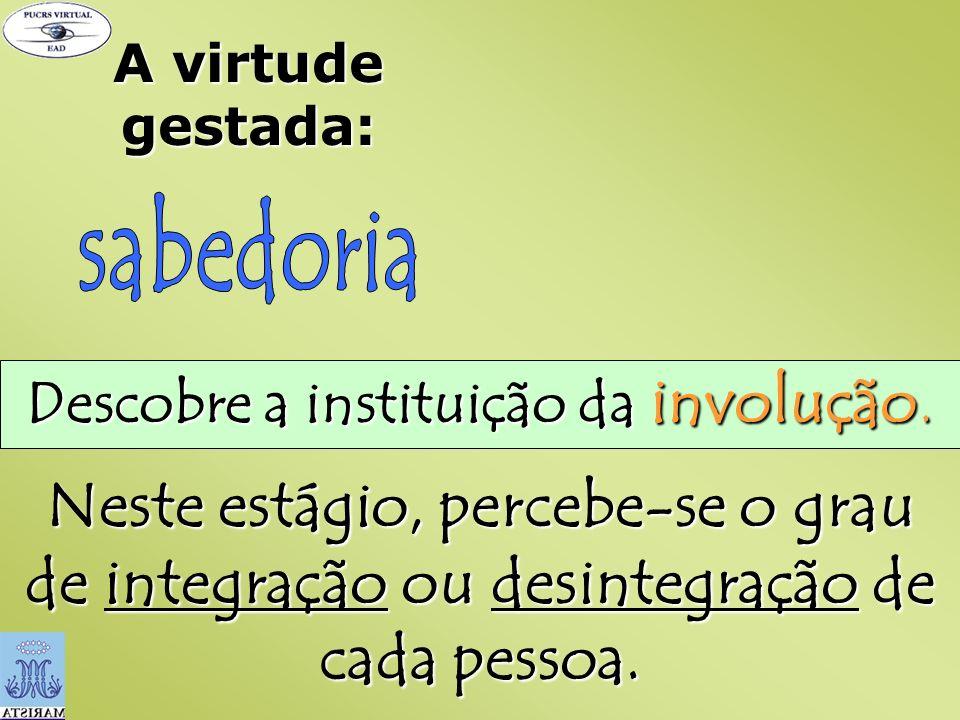 A virtude gestada: Descobre a instituição da involução. Neste estágio, percebe-se o grau de integração ou desintegração de cada pessoa.