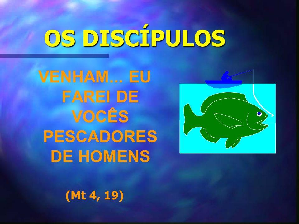 OS DISCÍPULOS VENHAM... EU FAREI DE VOCÊS PESCADORES DE HOMENS (Mt 4, 19)