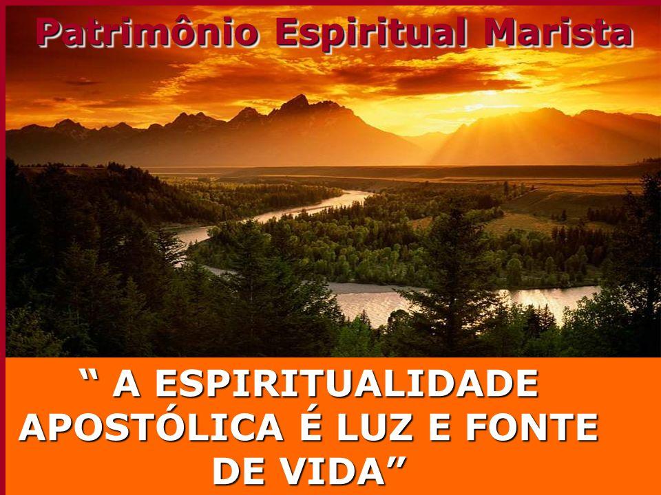 3 3 Cultivar o profetismo e através dele avançar na fidelidade criativa do CARISMA MARISTA É o que define nossaCREDIBILIDADE