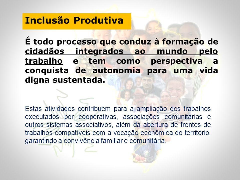 Inclusão Produtiva É todo processo que conduz à formação de cidadãos integrados ao mundo pelo trabalho e tem como perspectiva a conquista de autonomia