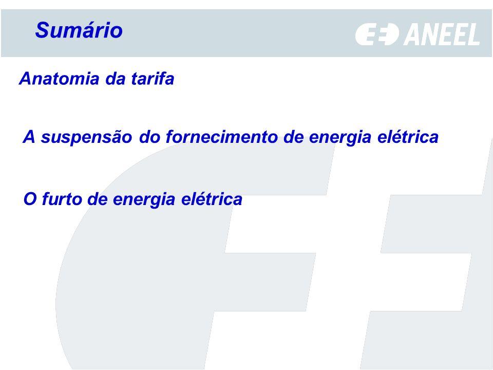 Agência Nacional de Energia Elétrica Os procedimentos utilizados para reajuste tarifário