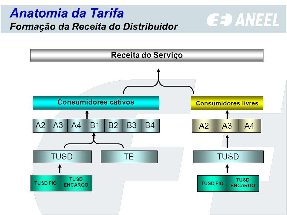 Anatomia da Tarifa Formação da Receita do Distribuidor Receita do Serviço B3 TUSD ENCARGO TE TUSD FIO TUSD B2B4B1A4A3A2 Consumidores cativos A3 TUSD A