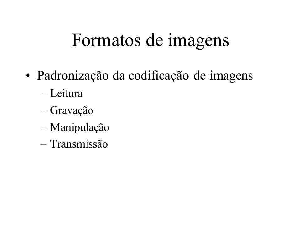 Formatos de imagens Padronização da codificação de imagens –Leitura –Gravação –Manipulação –Transmissão