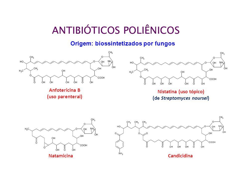 Anfotericina B (uso parenteral) Nistatina (uso tópico) (de Streptomyces noursei) NatamicinaCandicidina Origem: biossintetizados por fungos