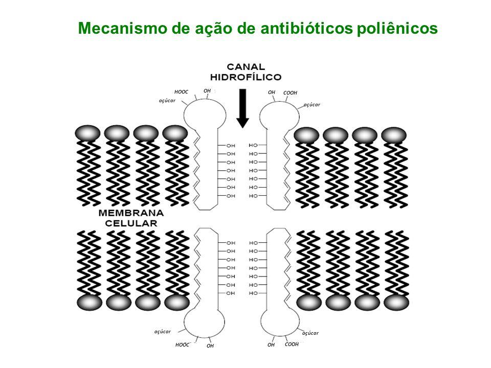açúcar COOH OH HOOC OH açúcar COOH OH açúcar HOOC OH Mecanismo de ação de antibióticos poliênicos