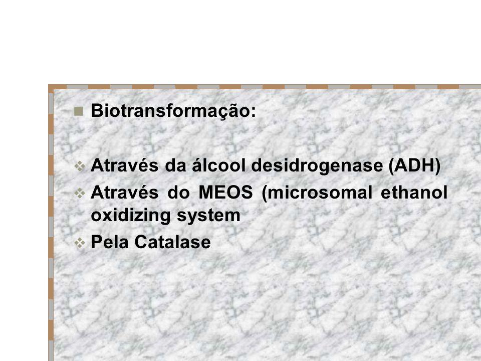 Biotransformação: Através da álcool desidrogenase (ADH) Através do MEOS (microsomal ethanol oxidizing system Pela Catalase