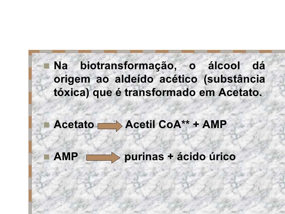 Na biotransformação, o álcool dá origem ao aldeído acético (substância tóxica) que é transformado em Acetato. Acetato Acetil CoA** + AMP AMP purinas +