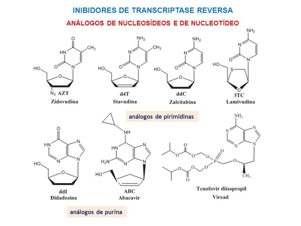 INIBIDORES DE TRANSCRIPTASE REVERSA ANÁLOGOS DE NUCLEOSÍDEOS E DE NUCLEOTÍDEO análogos de purina análogos de pirimidinas