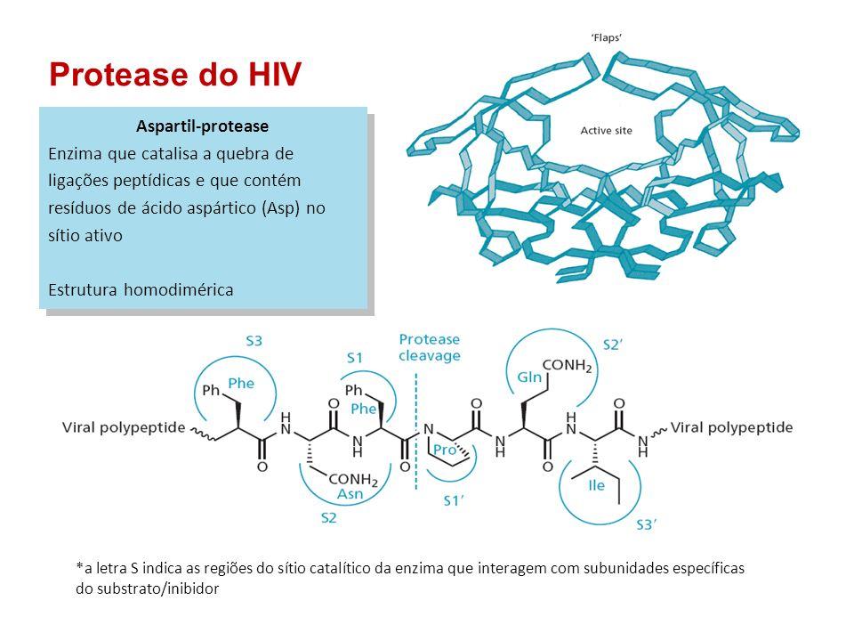 Protease do HIV Aspartil-protease Enzima que catalisa a quebra de ligações peptídicas e que contém resíduos de ácido aspártico (Asp) no sítio ativo Es