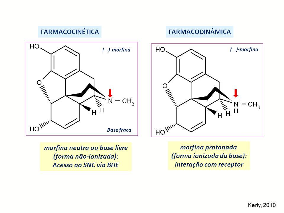 ( )-morfina FARMACODINÂMICA morfina protonada (forma ionizada da base): interação com receptor FARMACOCINÉTICA ( )-morfina morfina neutra ou base livr