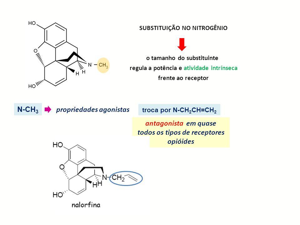 SUBSTITUIÇÃO NO NITROGÊNIO o tamanho do substituinte regula a potência e atividade intrínseca frente ao receptor N-CH 3 propriedades agonistas troca p