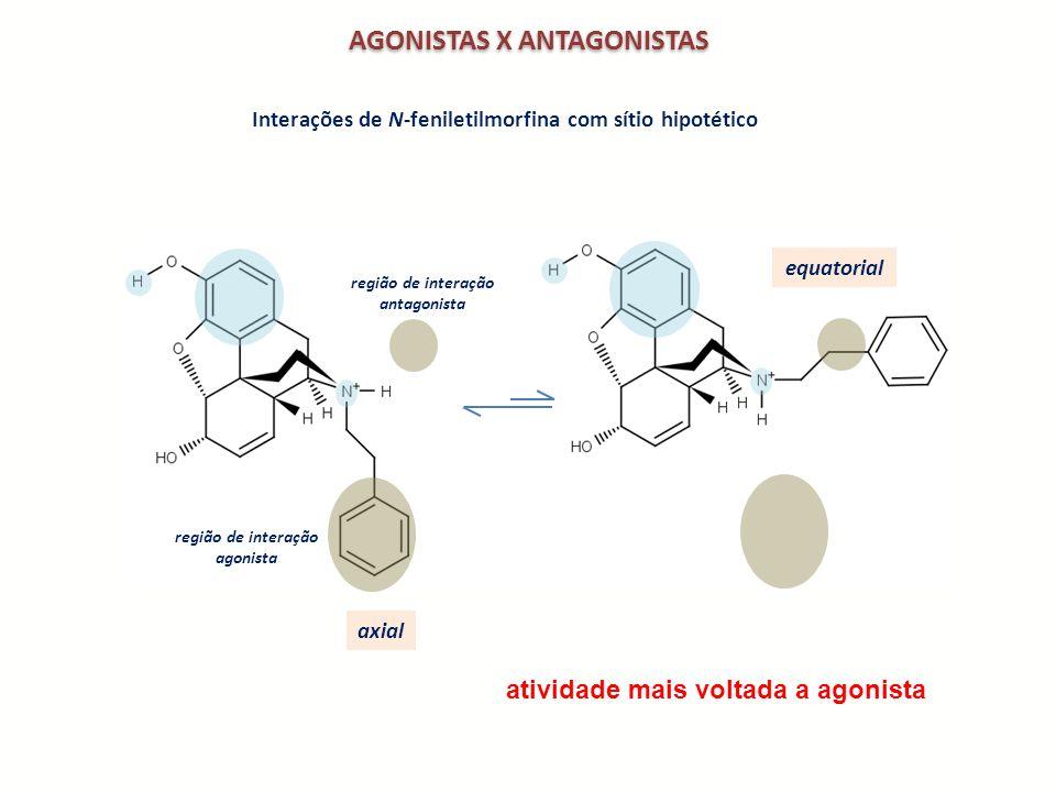 AGONISTAS X ANTAGONISTAS região de interação antagonista região de interação agonista axial equatorial Interações de N-feniletilmorfina com sítio hipo