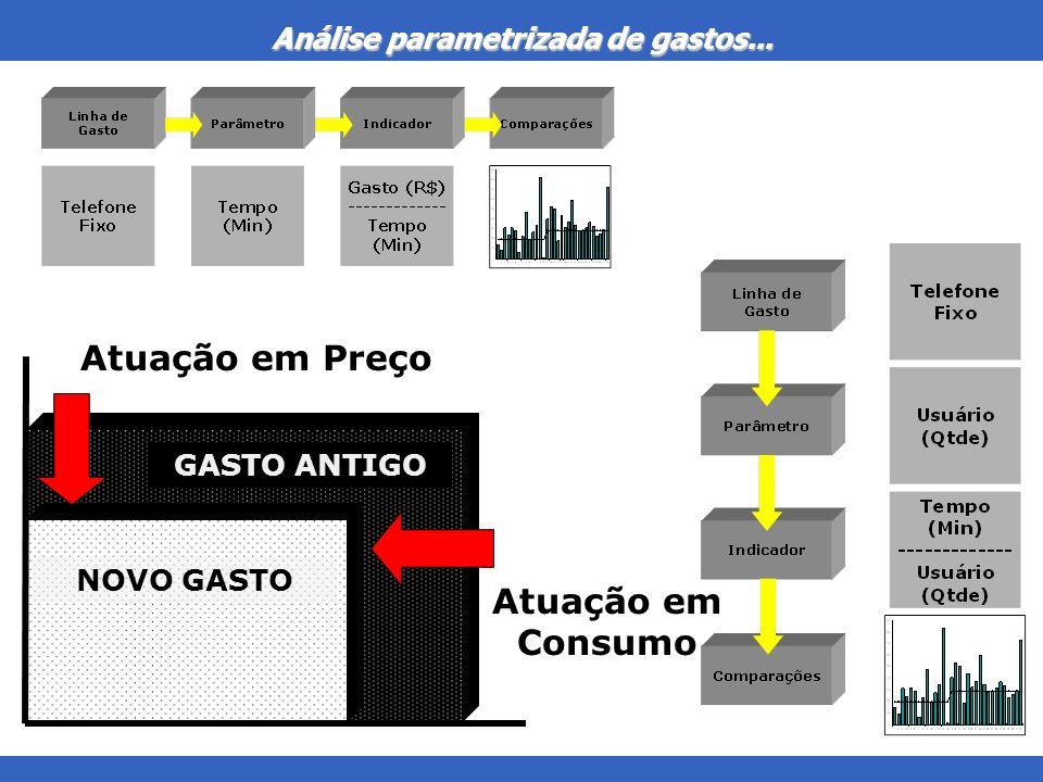 Análise parametrizada de gastos... Atuação em Preço GASTO ANTIGO NOVO GASTO Atuação em Consumo