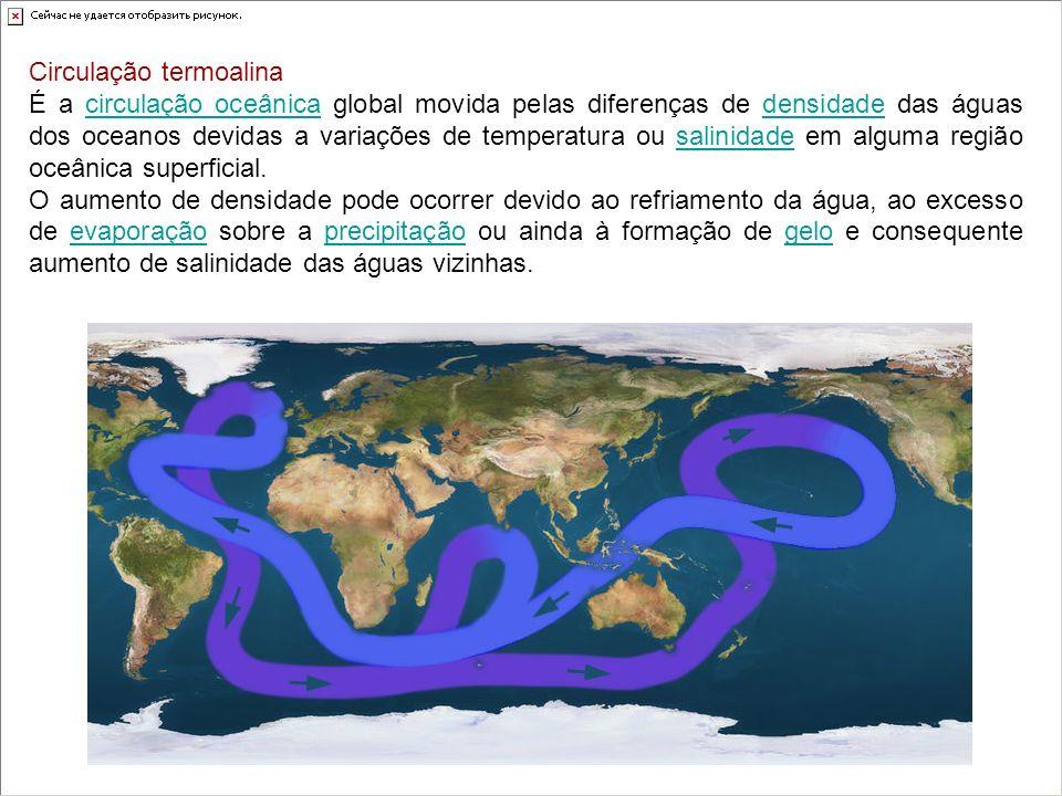 Circulação termoalina É a circulação oceânica global movida pelas diferenças de densidade das águas dos oceanos devidas a variações de temperatura ou